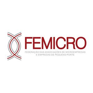01-femicro